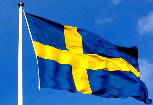 Bildresultat för svenska flaggans dag