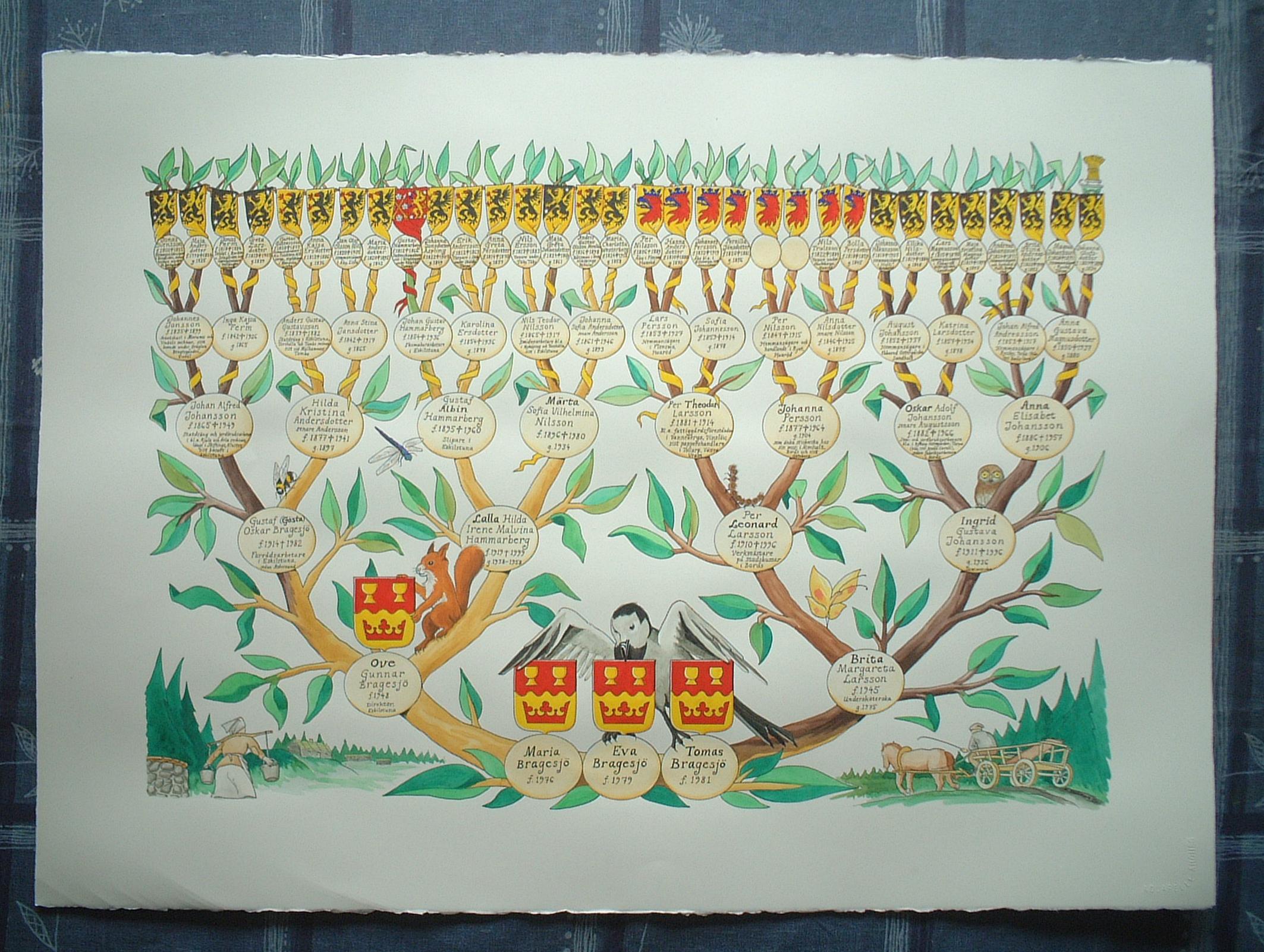 Släktträd, ritat av Magnus Bäckmark.